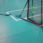 PL- Ballsport